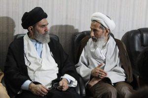 آیت الله رضازاده با رئیس شورای علمای شیعه پاکستان دیدار کرد+ تصاویر