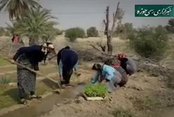 فیلم/ تلاش های یک روحانی روستا برای اشتغال مردان و زنان