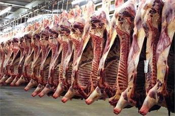 حکم خوردن گوشت هایی که به صورت اسلامی ذبح نشده اند