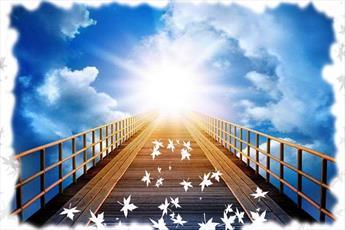قرآن بیان می کند: پرهیزکاران برای دلجویی چه کاری انجام می دهند؟