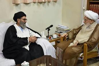 رئیس شورای علمای شیعه پاکستان با آیت الله العظمی صافی گلپایگانی دیدار کرد+ تصاویر