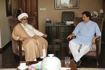 دبیر کل مجلس وحدت مسلمین پاکستان با عمران خان دیدار کرد+تصاویر