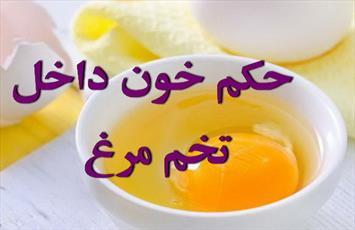 حکم خون در تخم مرغ