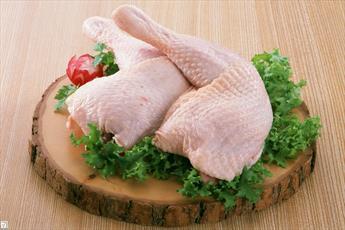 حکم مصرف رگ های سیاه در گوشت مرغ