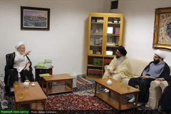 تصاویر/ دیدار اعضای مجمع عالی تفسیر حوزه و رئیس شورای علمای هندوستان با مراجع و علما