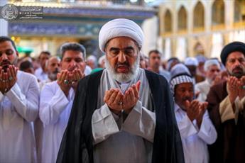 تصاویر/ برگزاری نماز عید قربان با حضور زائرین  در جوار حرم حضرت امیر المؤمنین (علیه السلام)