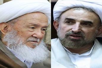 رئیس دانشگاه مذاهب اسلامی با آیت الله العظمی فیاض دیدار کرد