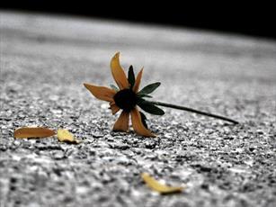 راهکار امام صادق(ع) برای رفع غم و اندوه دنیا