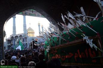 تصاور/ تشییع نمادین و عزاداری شهادت امام حسن مجتبی(علیه السلام)