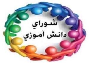 انتخابات شورای دانش آموزی مدارس امین برگزار شد