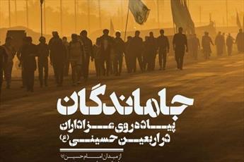 جزئیات برنامه پیاده روی جاماندگان اربعین  در بوشهر تشریح شد