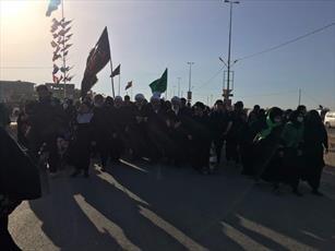 حضور آیت الله فاضل لنکرانی در راهپیمایی اربعین از نجف تا کربلا  +تصاویر
