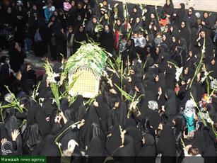 تصاویر/ آیین گلباران خورشید در آستان بی بی زینب یزدل آران و بیدگل