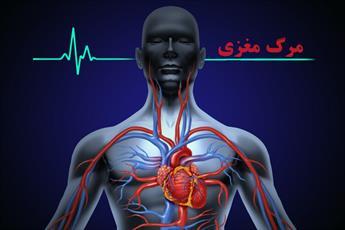 نظر مراجع عظام تقلید درباره اهدای عضو