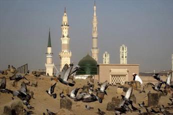 امام حسن(ع) الگوی بردباری و کرامت برای تمام بشریت هستند