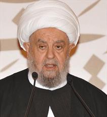 بهترین پاسخ به تجاوز اسرائیل تحکیم وحدت عربی و اسلامی است