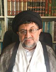 حجتالاسلام والمسلمین سیدآفتاب حیدر رضوی و روحانی مستقر در کیپتاون